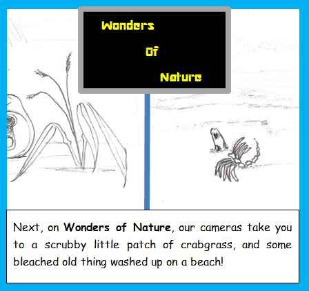 One-Panel: Wonders of Nature