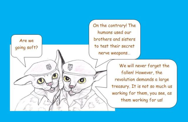 Dynamo Brothers: Commando Kittens