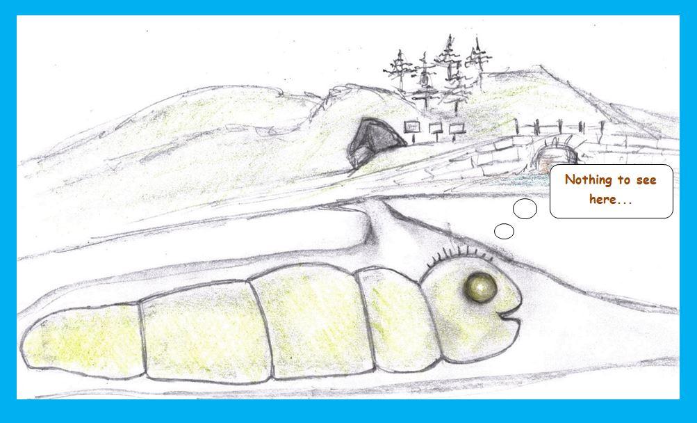 Cartoon of cave worm